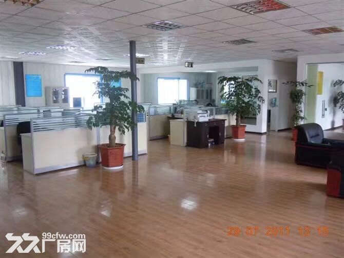 在彼岸小区正对面公司办公室-图(7)