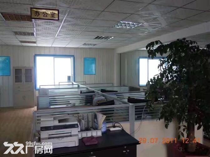 在彼岸小区正对面公司办公室-图(5)