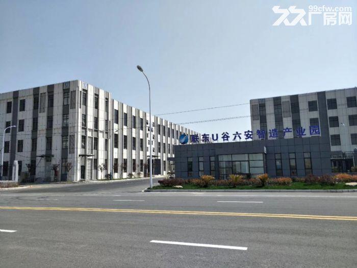 联东U谷·六安智造产业园高标准厂房出租-图(6)