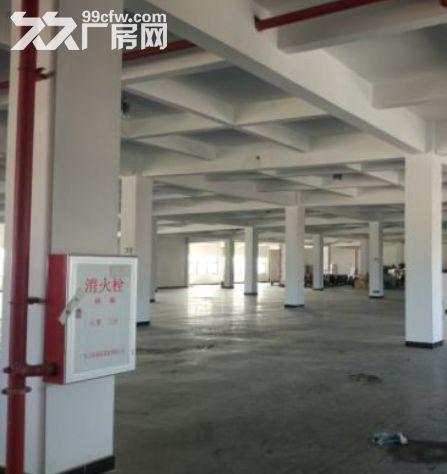 广州黄埔11500平米厂房出租丨交通便利可以分租可办理环评-图(4)