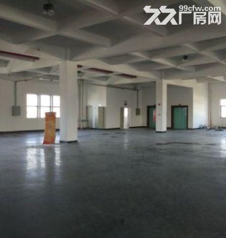 广州黄埔11500平米厂房出租丨交通便利可以分租可办理环评-图(1)