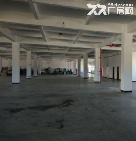 广州黄埔11500平米厂房出租丨交通便利可以分租可办理环评-图(2)