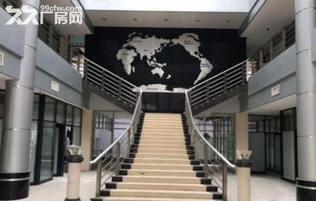 增城新塘79200平米厂房出租丨独门独院-图(1)