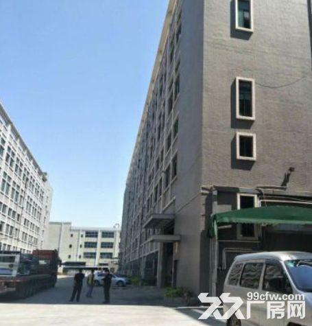 增城新塘79200平米厂房出租丨配套齐全可以分租可办理环评-图(2)