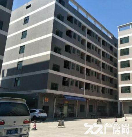 增城新塘79200平米厂房出租丨配套齐全可以分租可办理环评-图(1)