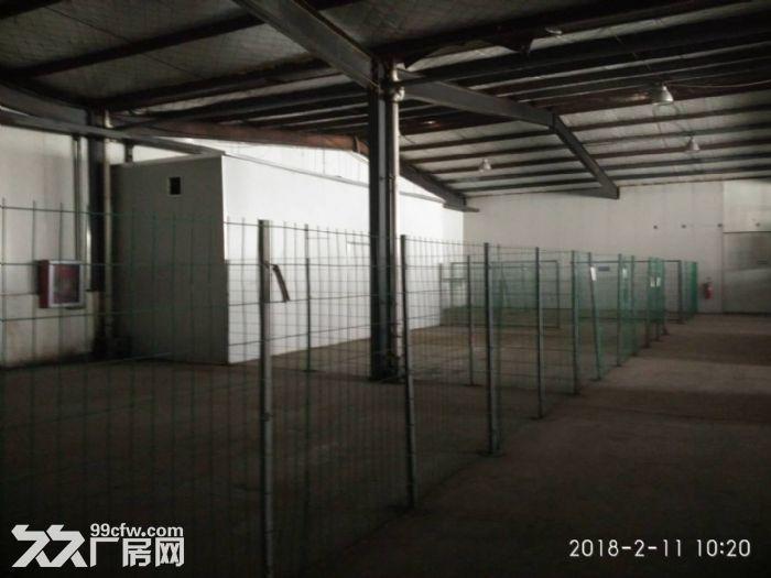 厂房多元化4000平方米出租-图(2)