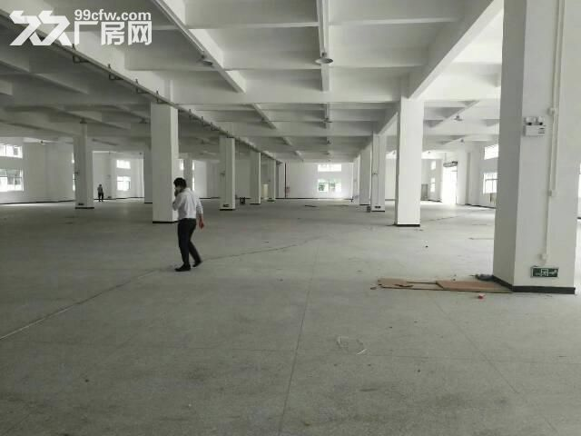 出售中山东凤原房东独门独院10000平可分割-图(5)