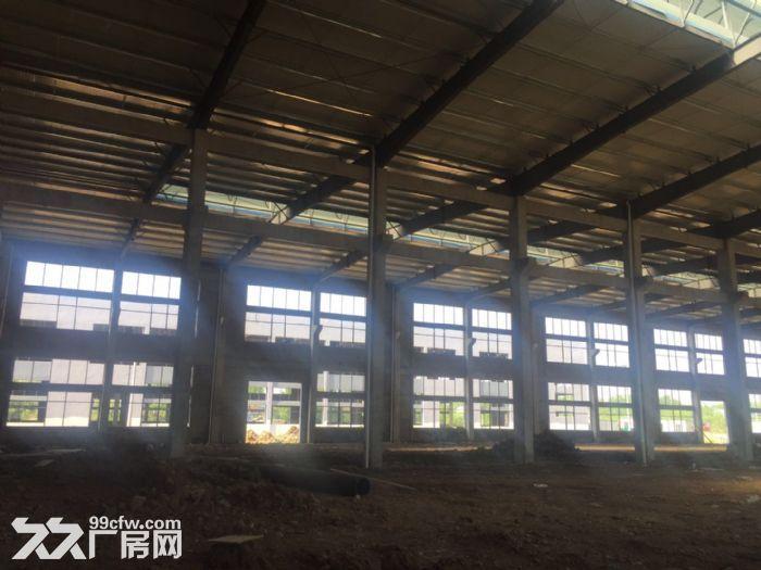 出租舒城杭埠独栋17000平米至230000平米厂房-图(2)