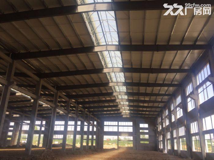 出租舒城杭埠独栋17000平米至230000平米厂房-图(3)