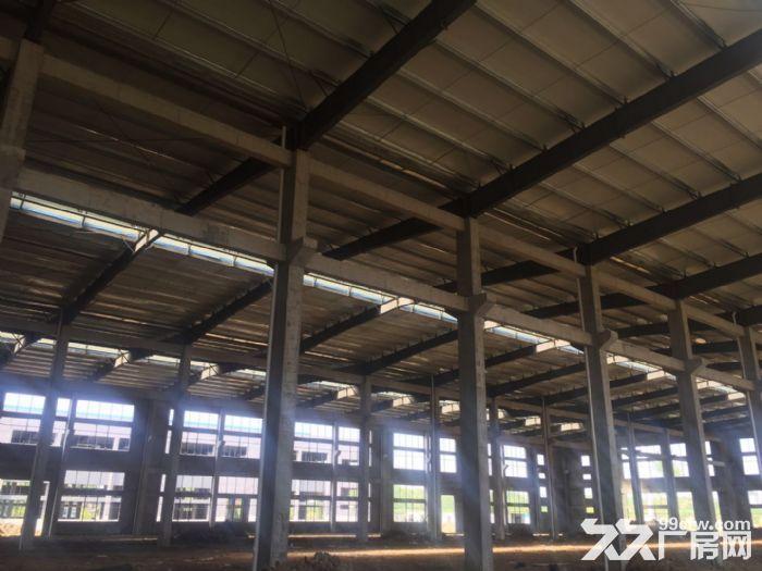 出租舒城杭埠独栋17000平米至230000平米厂房-图(4)