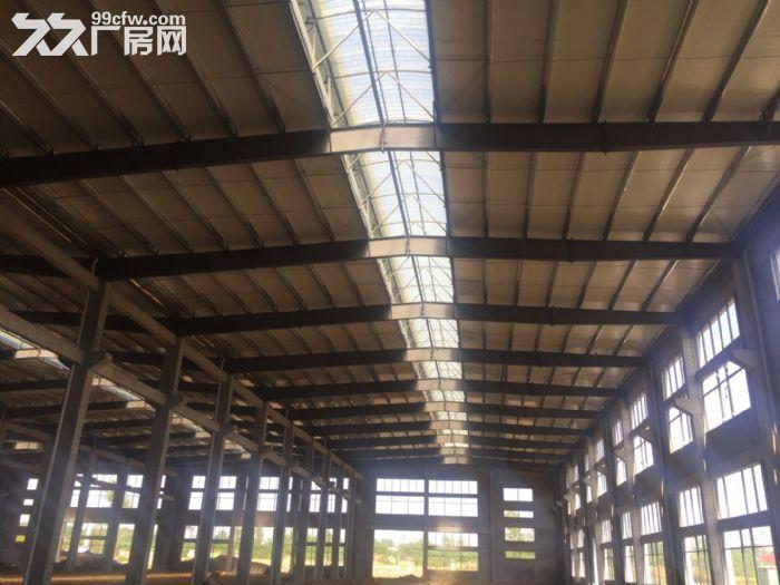 出租舒城杭埠独栋17000平米至230000平米厂房-图(6)