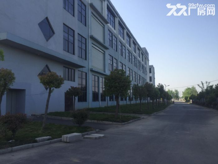 出租舒城杭埠独栋17000平米至230000平米厂房-图(7)