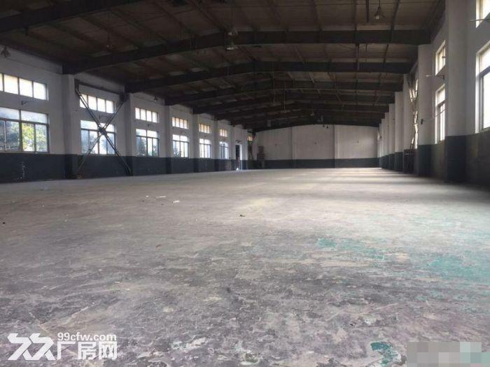 新桥独栋单层2450平米仓库厂房出租-图(3)