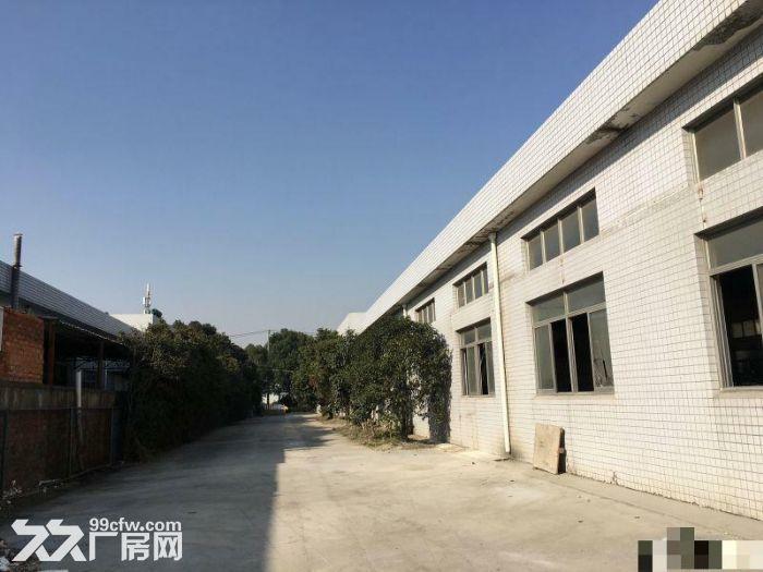 新桥独栋单层2450平米仓库厂房出租-图(4)