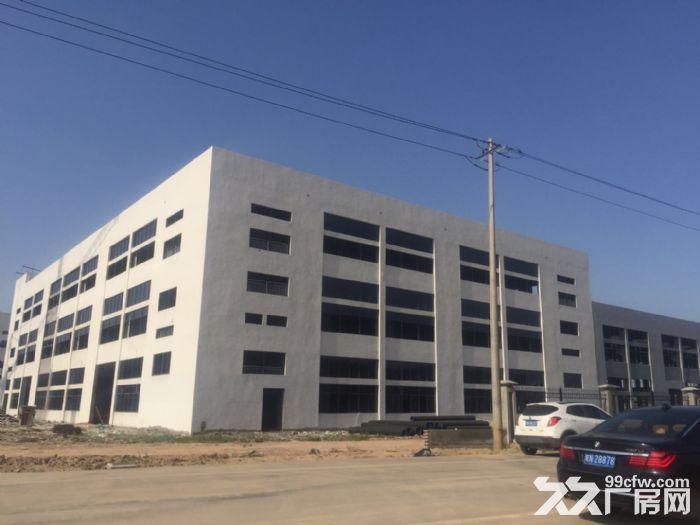 合肥周边、六安、舒城230000平框架、钢构厂房出租。-图(3)