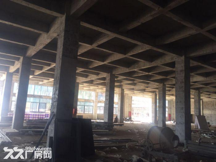 合肥周边、六安、舒城230000平框架、钢构厂房出租。-图(2)