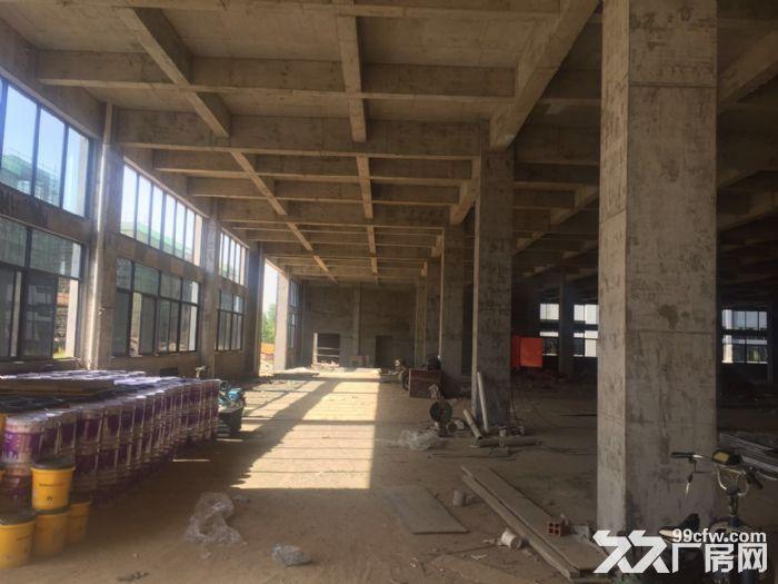 合肥周边、六安、舒城230000平框架、钢构厂房出租。-图(6)