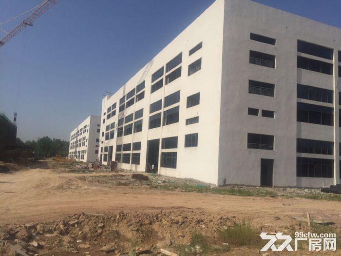 合肥周边、六安、舒城230000平框架、钢构厂房出租。-图(8)