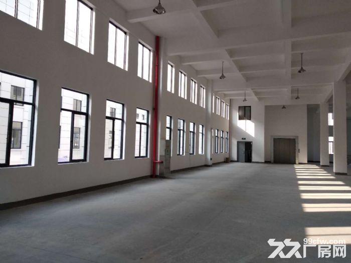 萧山花木城2700方仓库出租,3吨货梯,内配宿舍-图(2)