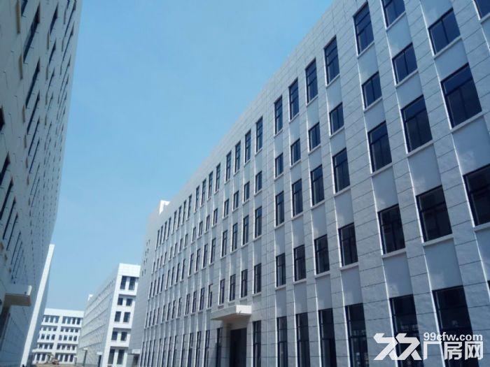 萧山花木城2700方仓库出租,3吨货梯,内配宿舍-图(5)