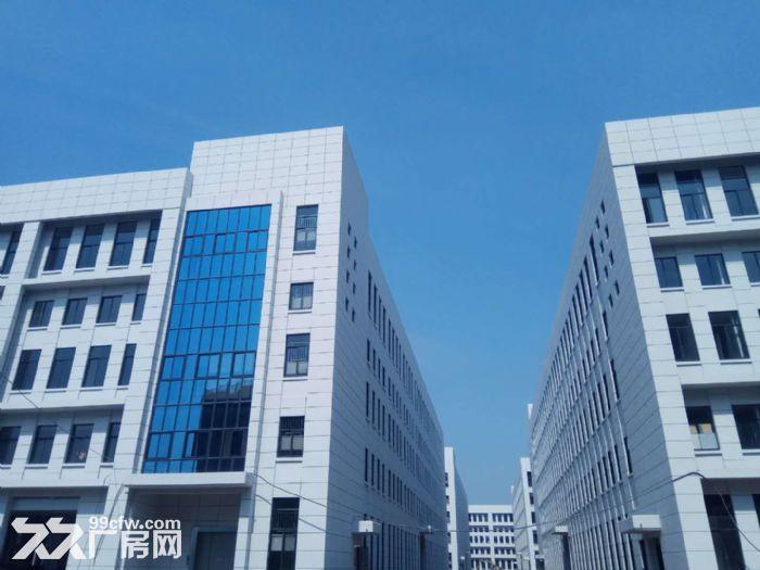 萧山花木城2700方仓库出租,3吨货梯,内配宿舍-图(4)