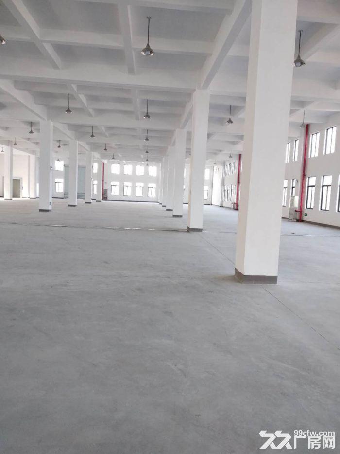 萧山花木城2700方仓库出租,3吨货梯,内配宿舍-图(3)