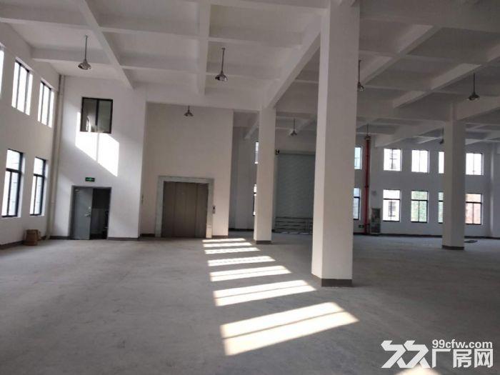 萧山花木城2700方仓库出租,3吨货梯,内配宿舍-图(6)