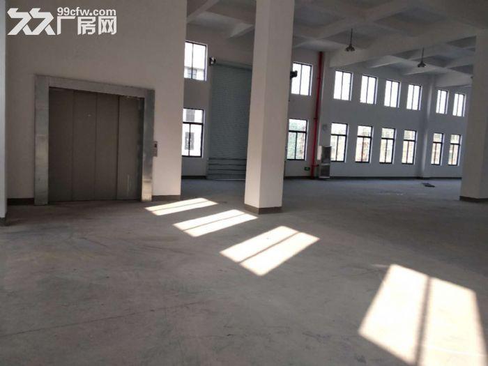 萧山花木城2700方仓库出租,3吨货梯,内配宿舍-图(7)