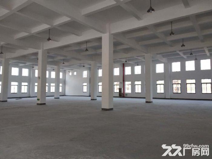 萧山花木城2700方仓库出租,3吨货梯,内配宿舍-图(8)