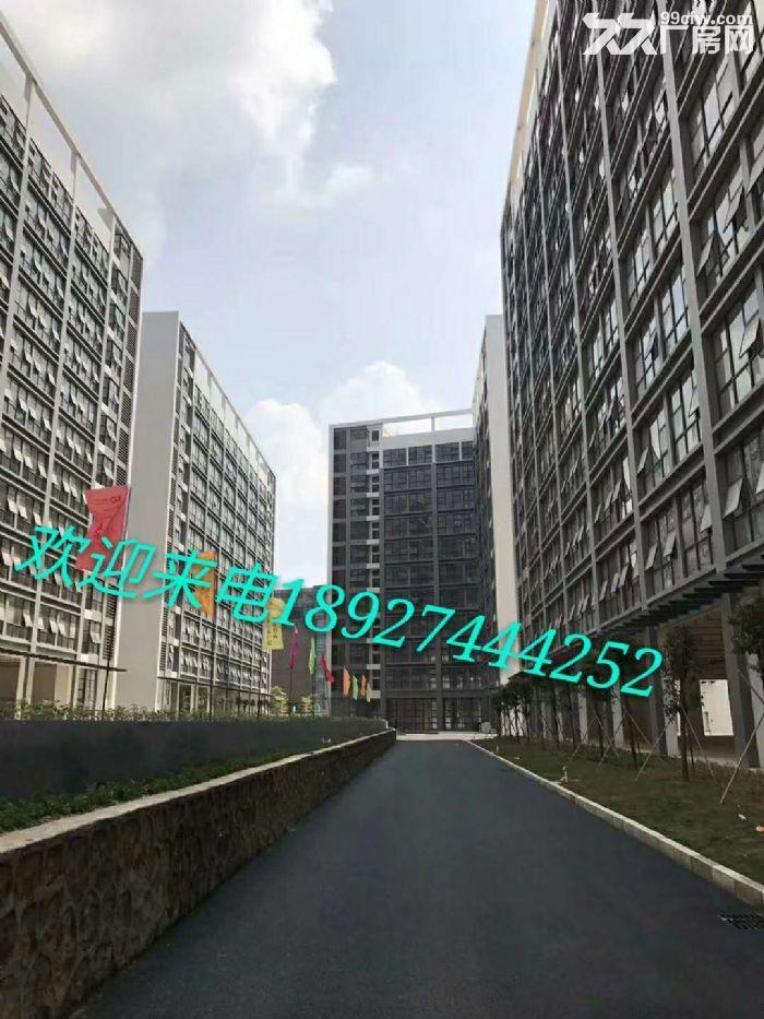 横岗厂房出租原房东可分租500平700平1000-图(1)