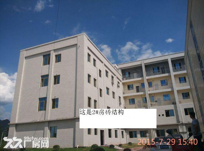 首付5成独院标准厂房出售-图(2)
