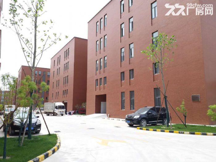 独栋四层研发/生产/办公楼首层7米挑高-图(2)