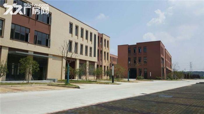 独栋四层研发/生产/办公楼首层7米挑高-图(4)