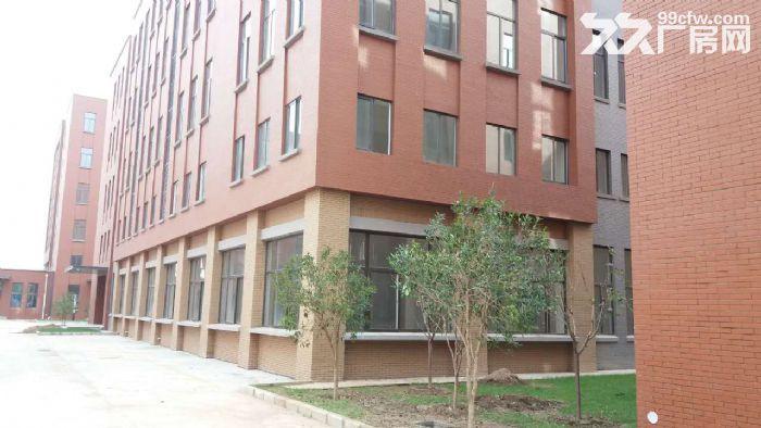 独栋四层研发/生产/办公楼首层7米挑高-图(3)
