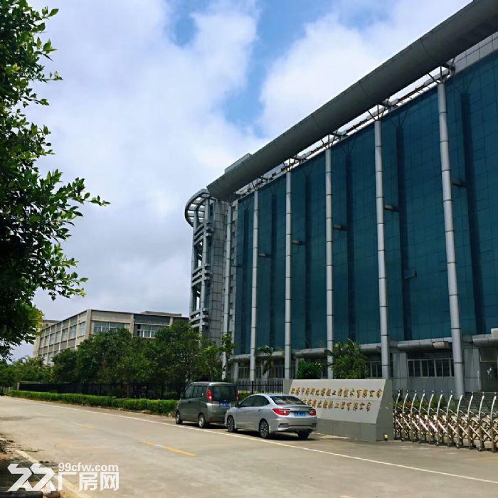 金湾联港工业区标准厂房整租或分租-图(1)