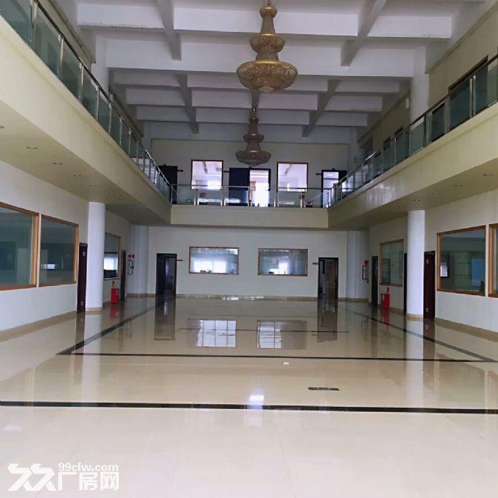 金湾联港工业区标准厂房整租或分租-图(2)