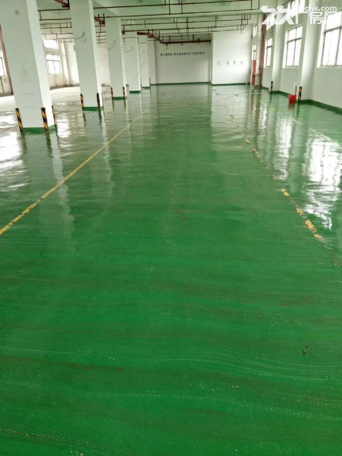 张江集电港700至1300平集成电路半导体厂房仓库