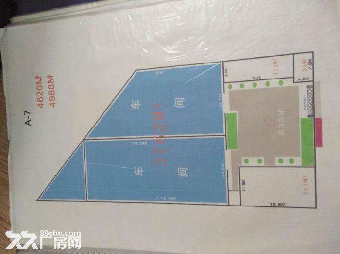 浩旺产业园共耕园区3800平米-图(4)