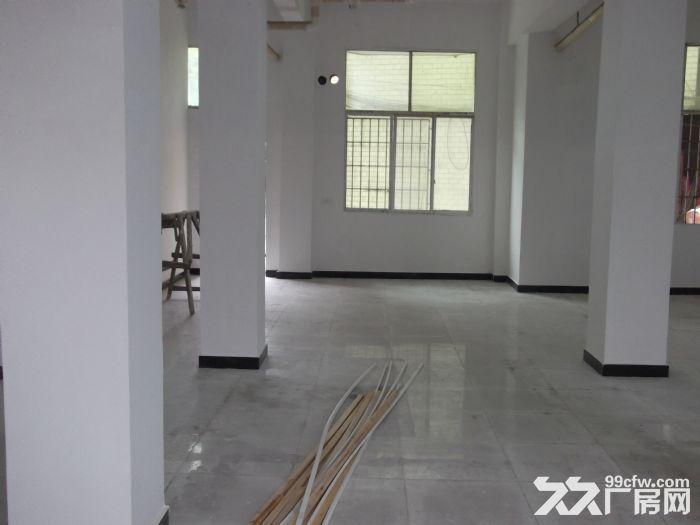独栋砖混框架小厂房(库房)出租-图(1)