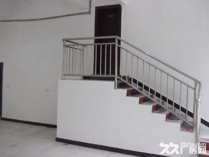 独栋砖混框架小厂房(库房)出租-图(3)