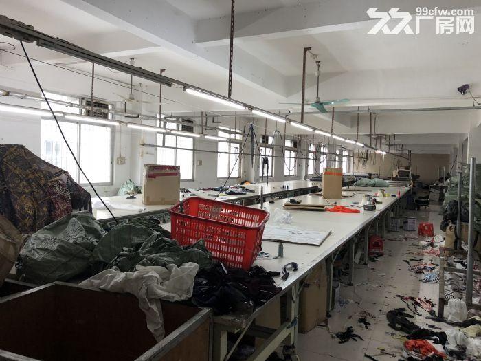 番禺南村经营中服装厂转让-图(3)