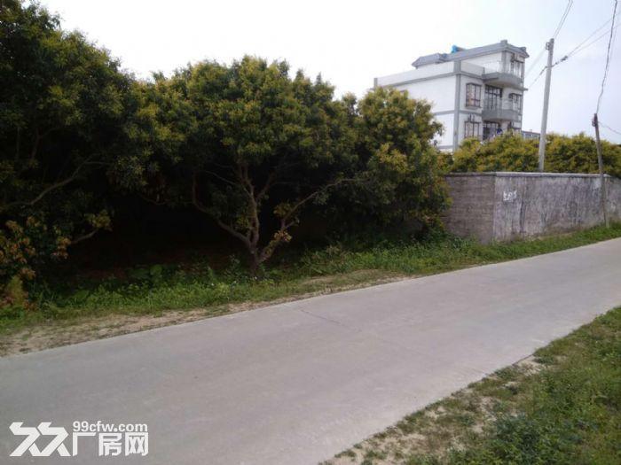 从化区城郊街塘下村道边0.7亩宅基地永久转让-图(1)