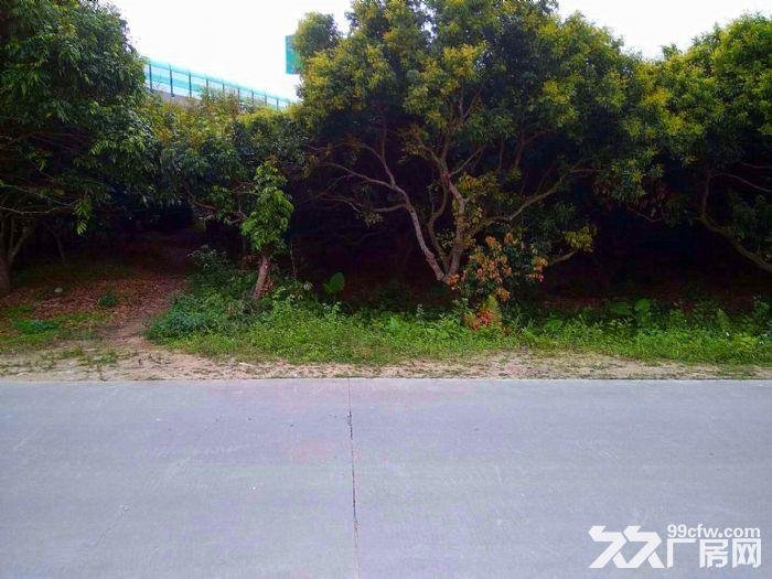 从化区城郊街塘下村道边0.7亩宅基地永久转让-图(2)