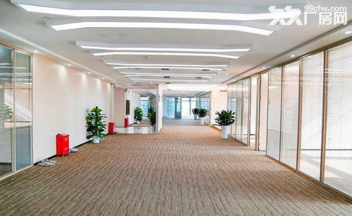 滨江100、300、500方,精装办公服装设计培训-图(6)