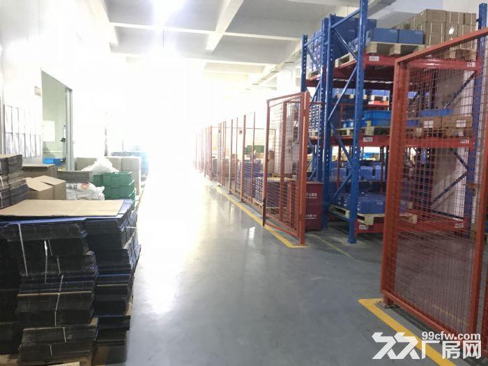 出租新区旺庄核心地段4000平独栋双层厂房形象好-图(2)