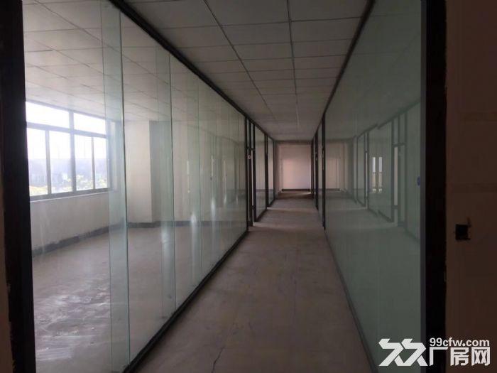 开发区库房带办公室,大小面积分割,只电商-图(6)