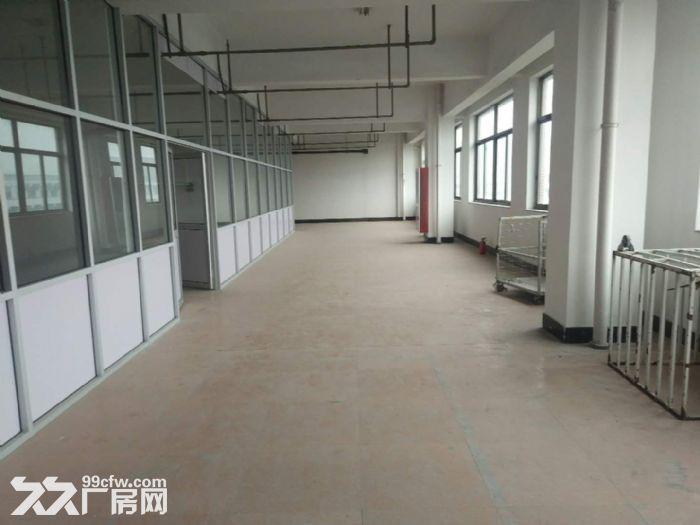 开发区库房带办公室,大小面积分割,只电商-图(7)