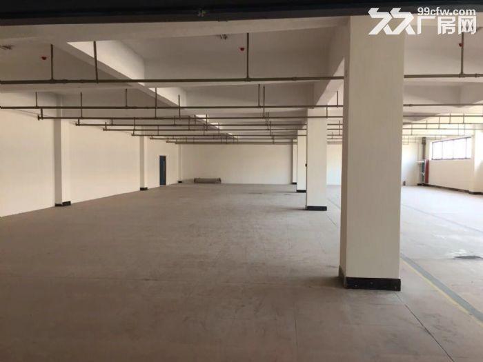 开发区库房带办公室,大小面积分割,只电商-图(8)