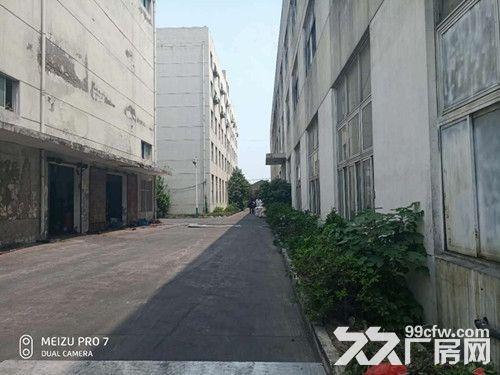 青浦104绿证单层有行车牛腿4200平厂房-图(5)