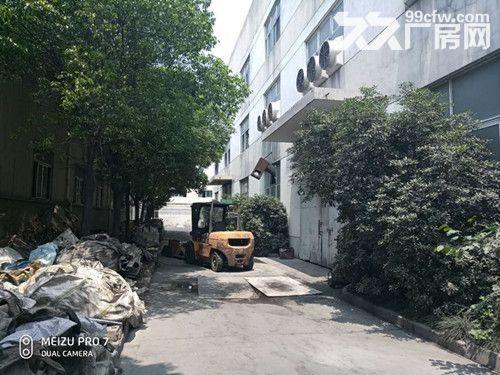 青浦104绿证单层有行车牛腿4200平厂房-图(6)